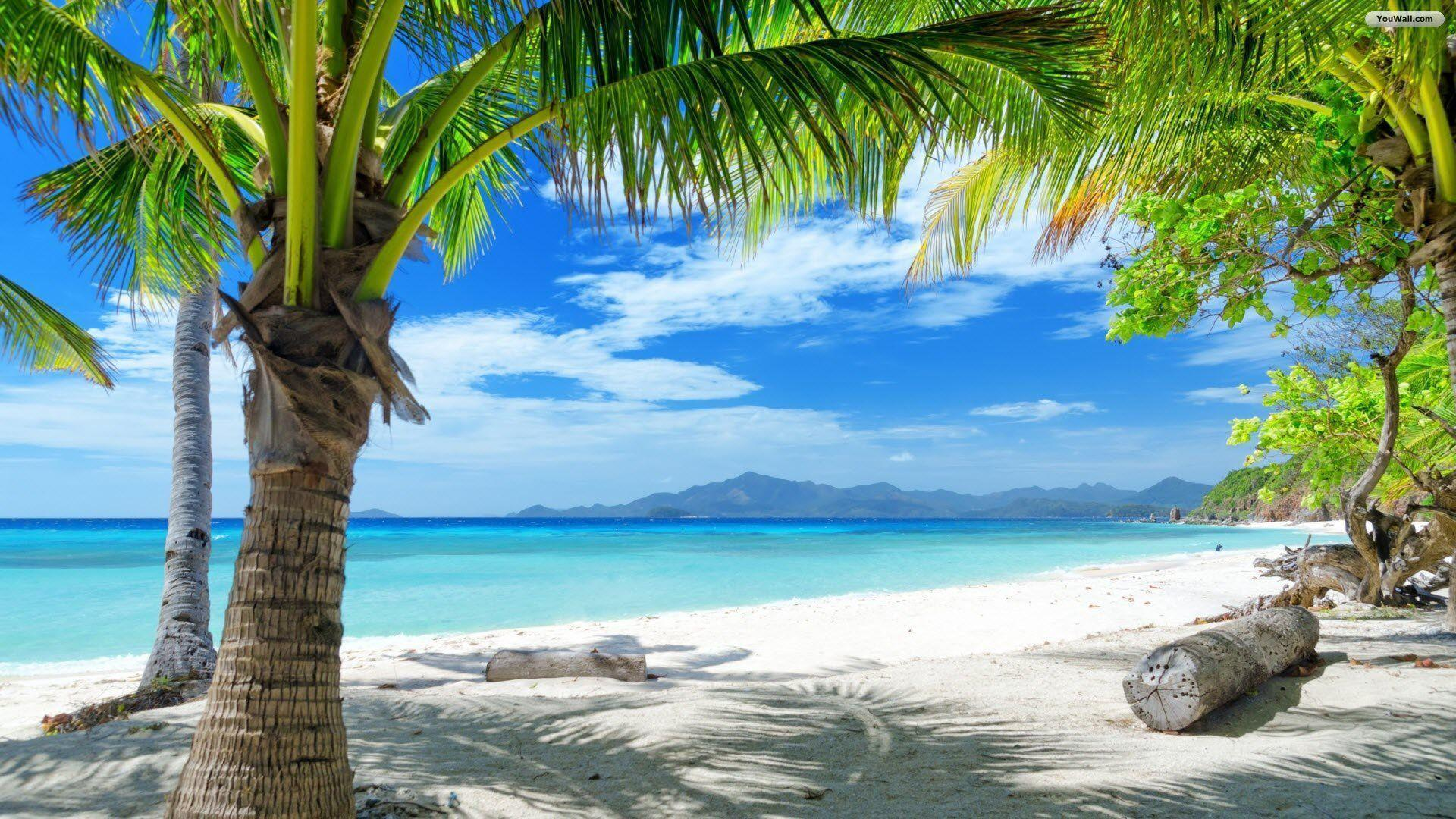 Beach Paradise Wallpapers
