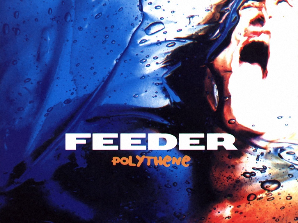 Feeder Wallpapers