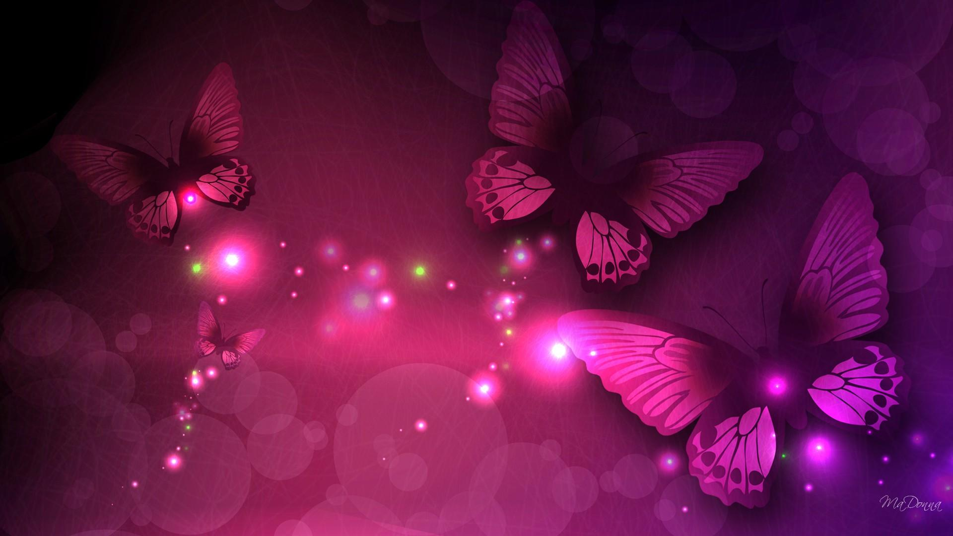 Download Pink And White Butterfly Wallpapers Gallery